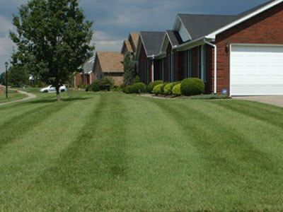 Titan Ltd. lawn in Louisville, KY