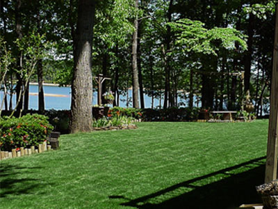 Titan Rx lawn in Lake Hartwell Georgia